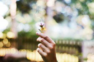 mindfulness interview